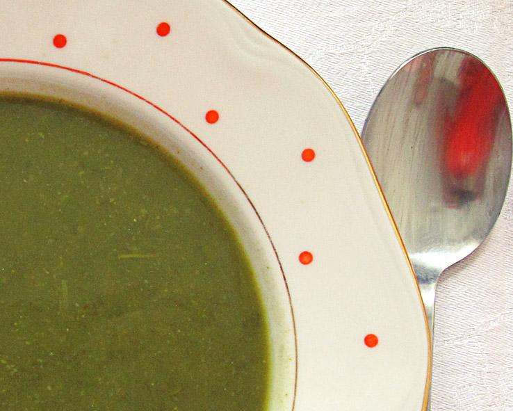 Jarná polievka, úvodný obrázok